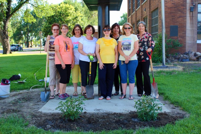 Planting yellow rose bushes in honor of Zonta International's upcoming 100th anniversary.